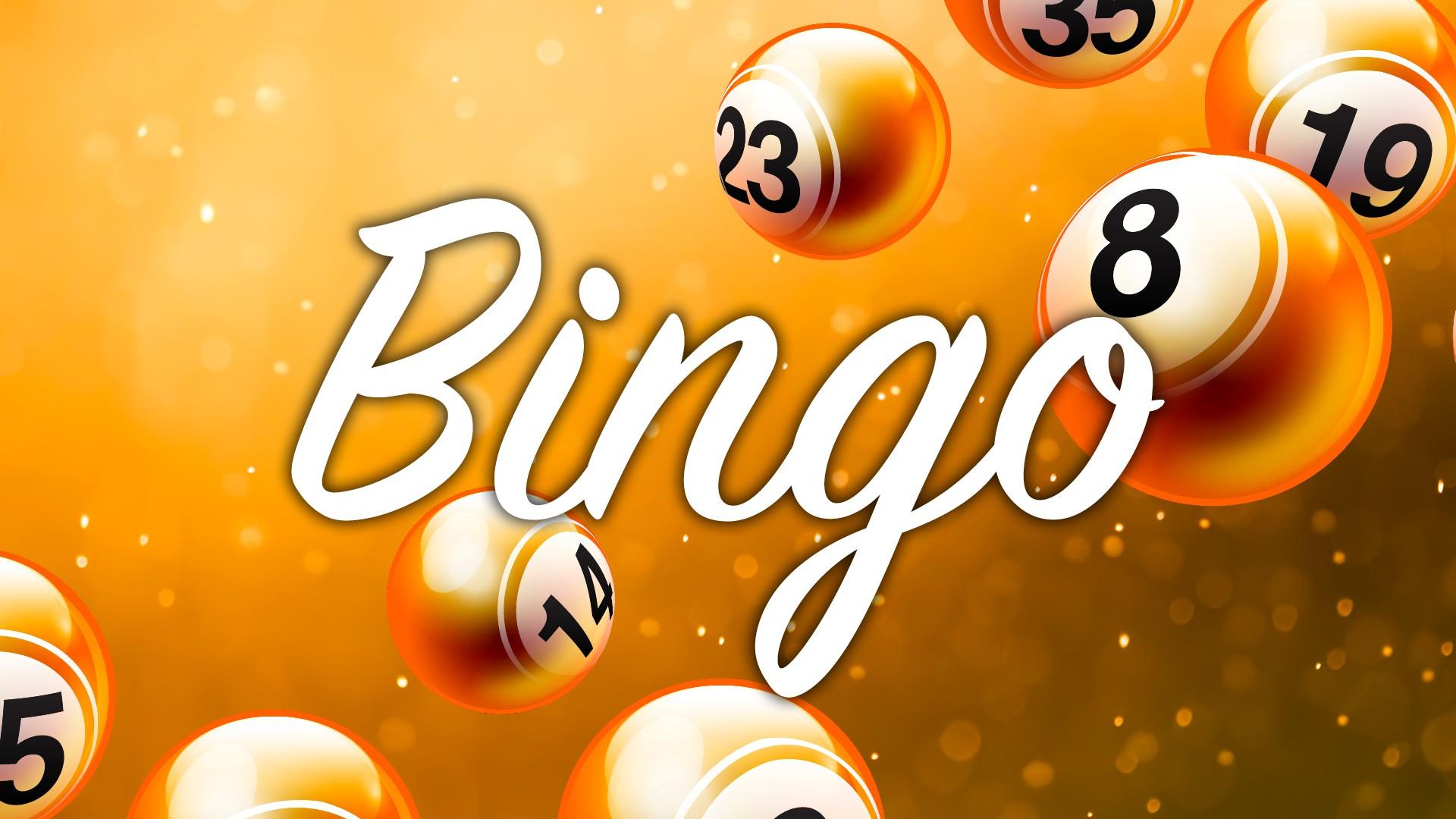 FL_IJmuiden_Web_Bingo_16en23feb20.jpg