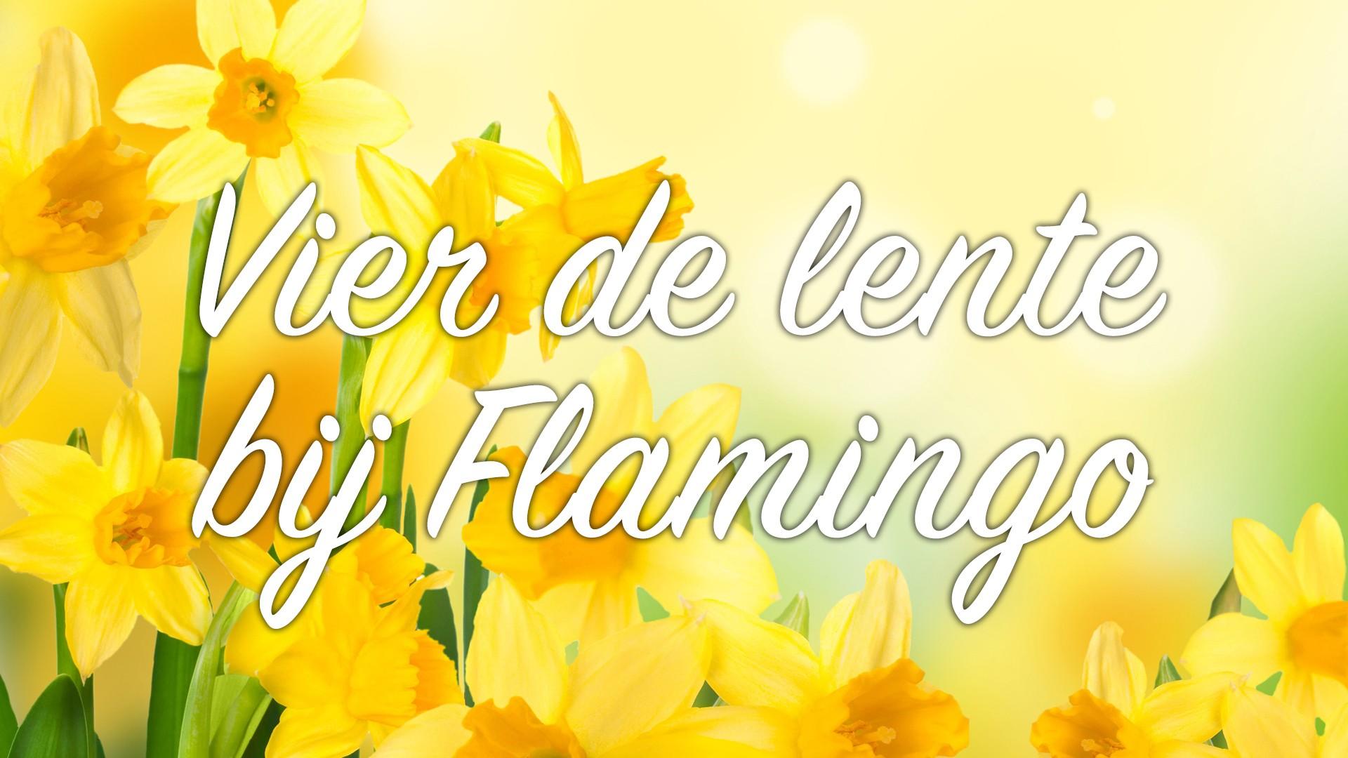 Vier-de-lente-bij-Flamingo_maart20.jpg